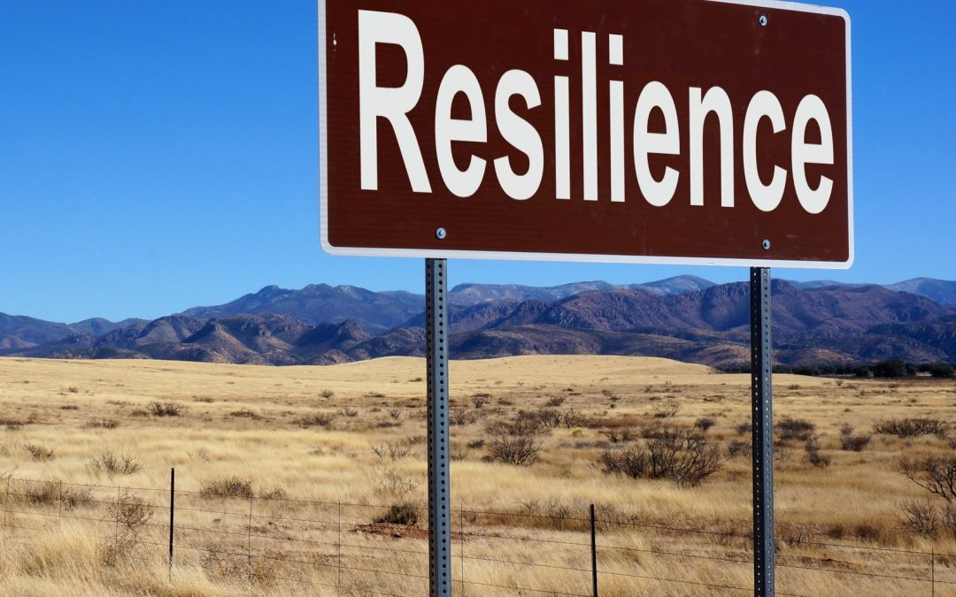Mastering Resilience Live Teleseminar